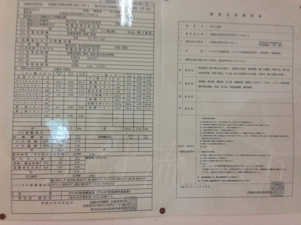 ポロト温泉分析表