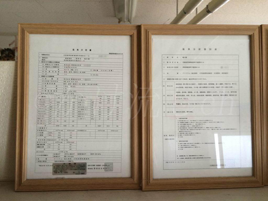 鹿部温泉公衆浴場亀の湯温泉分析表