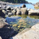 函館市椴法華の水無海浜温泉で『水曜どうでしょう』大泉洋のマネをする
